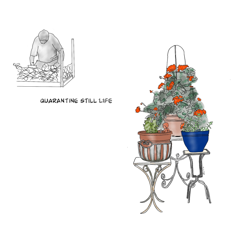 Quarantine still life art 062220